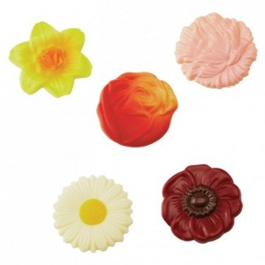 Chocolate mould polycarbonate 10 assorted flowers