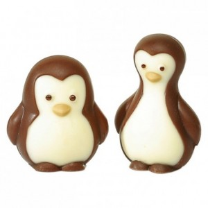 Auks chocolate mould in polycarbonate 275 x 135 mm (4 moulds)