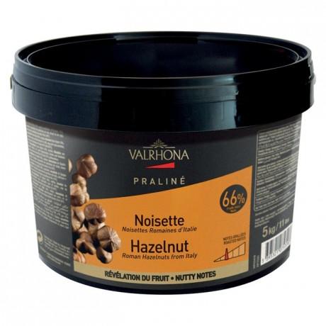 Hazelnut Fruity Praliné 66% nuts 5 kg