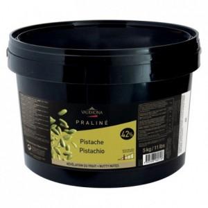 Pistachio Praliné 42% nuts 5 kg