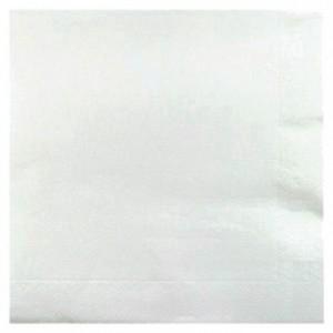 Double point white napkin 38 x 38 cm (900 pcs)