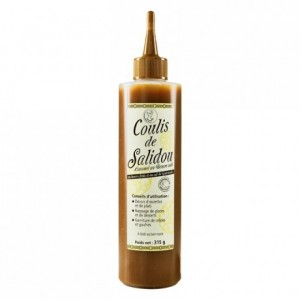 Salted butter caramel coulis Salidou 315 g